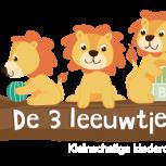 kleinschalige kinderopvang de 3 leeuwtjes